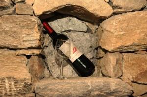in Südtirol gibt es herrliche Weine