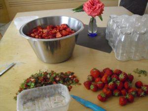 Frische Erdbeeren vom Hof werden zu Marmelade verarbeitet